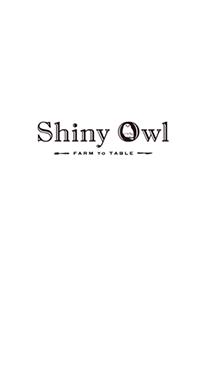 Shiny Owl